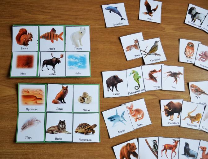 Интеллектуальная игра для школьников 7-10 лет «в мире флоры и фауны» - вашпедагог